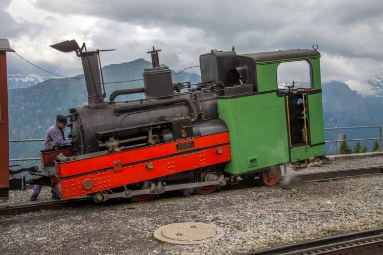 Steam Cog Train