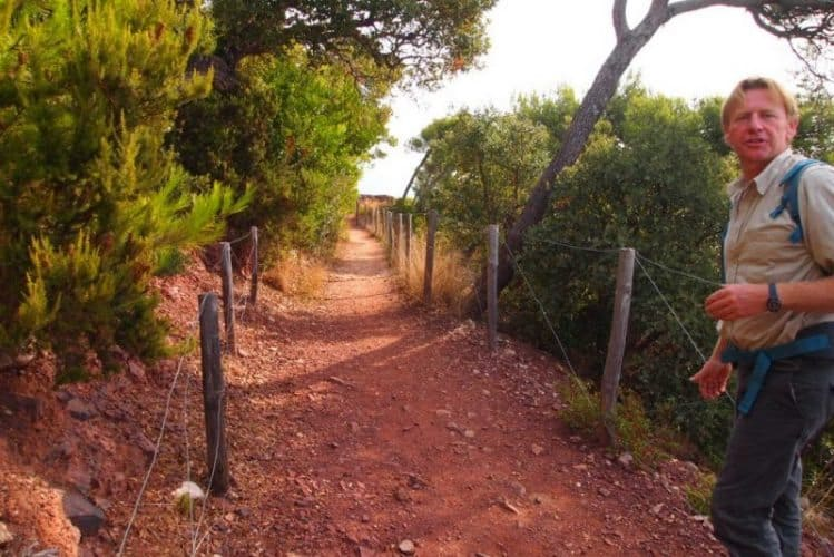Vincent Blondel, a nature guide hikes in the Colle Noir, in the Cap Garonne forest.