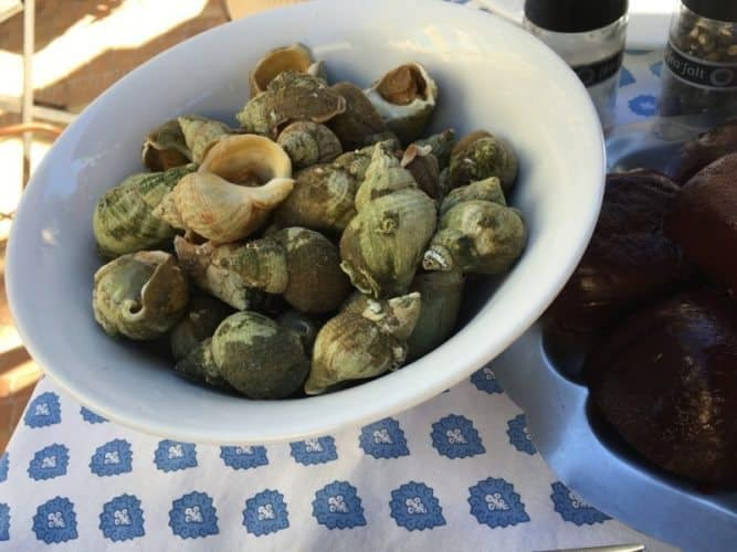 Escargot, boulots, snails, whatever you call them, at L'Auberge des Glycines, Porquerolles.
