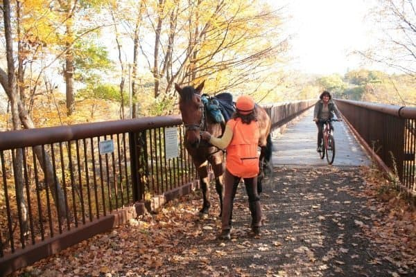 The recently built Rail Trail bridge of Wallkill Valley Land Trust gives everyone access to trails. Kristen Richard photos.