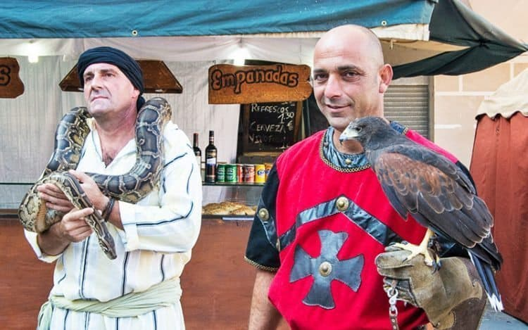 Falconry is one of the main attractions at the festival.
