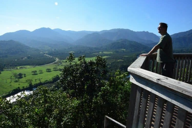 The surroundings of Sleeping Giant Rainforest Lodge is best enjoyed from the gazebo, a muddy half mile climb past incredible rock walls and hanging vines.
