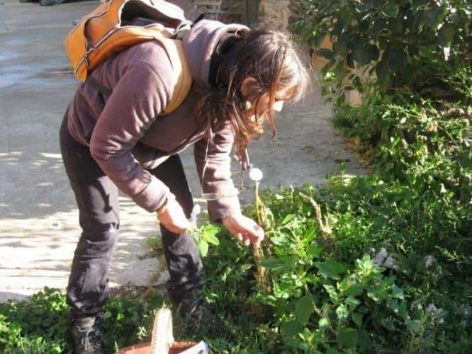 Eco-Tourism: Rethinking the Benefits
