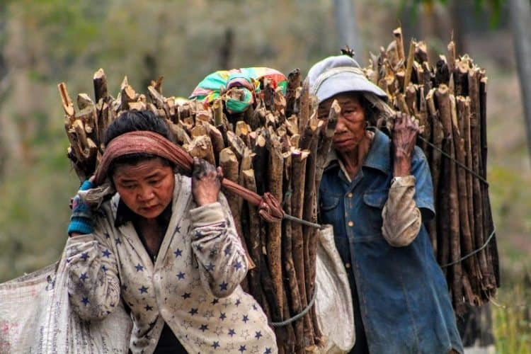 Survival in Laos. Stacy Dixon photos.