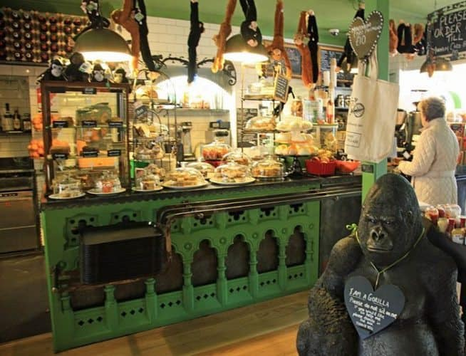 Kazie the Gorilla is the mascot of the delightful Alpine Coffee Shop in Betws-y-Coed, which supports animal organizations including the Orangutan Foundation and Ape Action Africa.