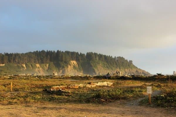 Dramatic hills at La Push, Washington. Wynne Crombie photos.