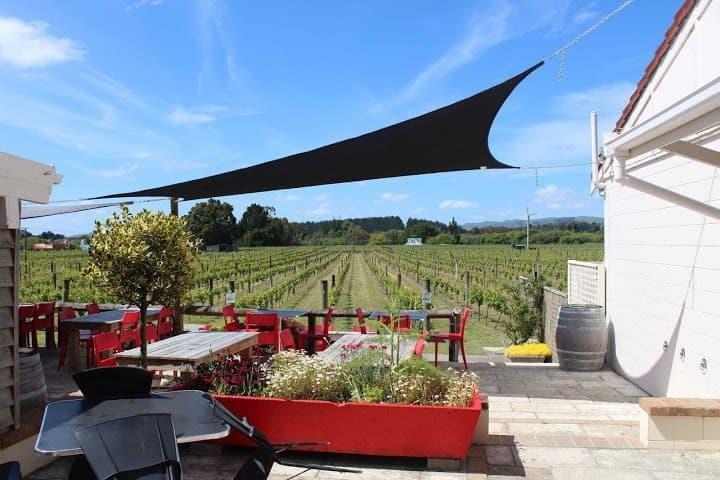 Margrain's vineyard cafe in Martinborough