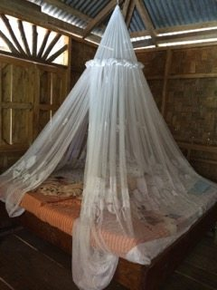 Mosquito netting is a good thing in the jungle.