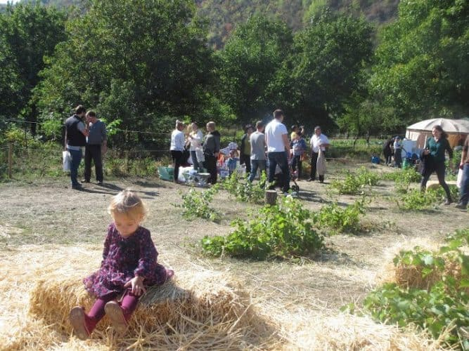 A Butuceni village start of National Wine Day.