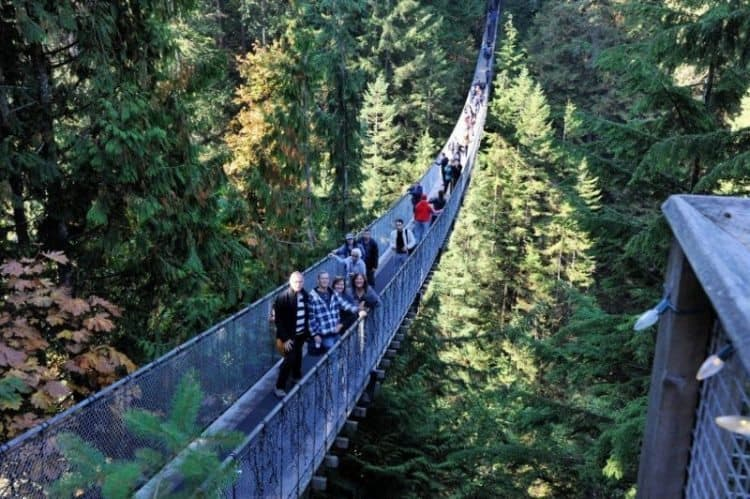 Capilano suspension bridge in Victoria, British Columbia. Tab Hauser photos.