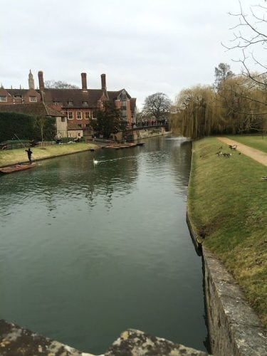 Instead of punting down the River Cam, stroll by the banks and watch the ducks waddling out of the water over the sloping green behind Kings College.