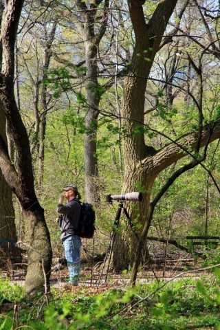 Some birders come equipped with very long lenses to capture their targets.