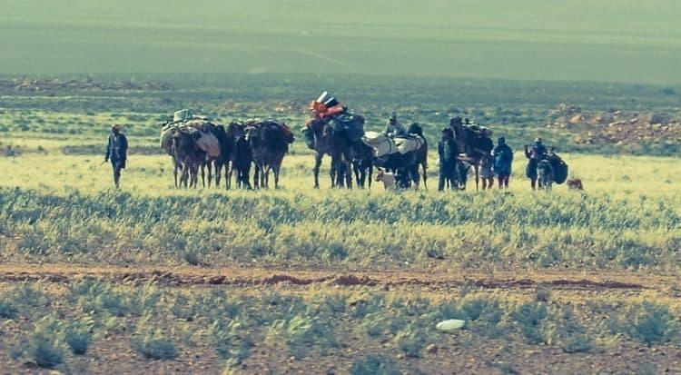 Nomads at side of road.