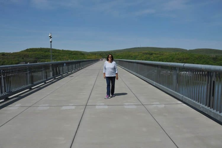 Walkway over Hudson, a converted bridge now just for walkers and bikers.
