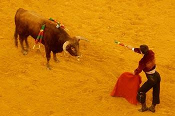 Lisbon, Portugal: Traditional Bullfighting