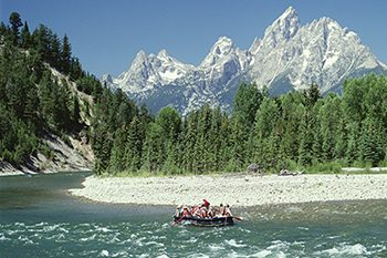 See Wyoming's Wildlife & National Parks This Summer