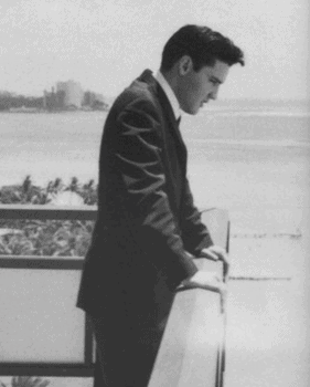 Elvis enjoys the view from Ali'i Tower. Photo courtesy of Elvis Australia.