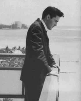Elvis enjoys the view from Ali'i Tower. Photo courtesy of Elvis Australia.