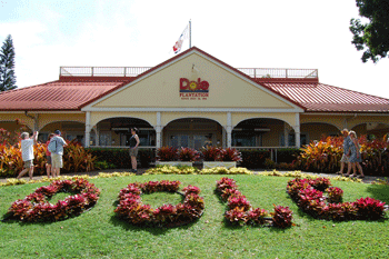 The Dole Pineapple Plantation