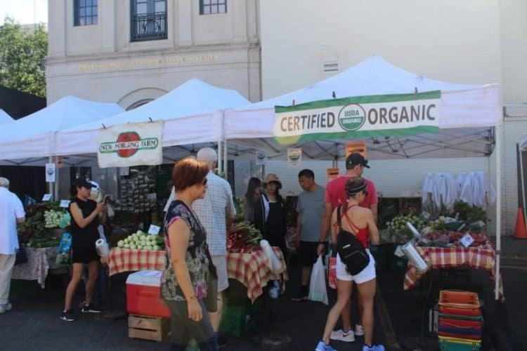 Dupont Circle farmers market is a fun place to be in DC.