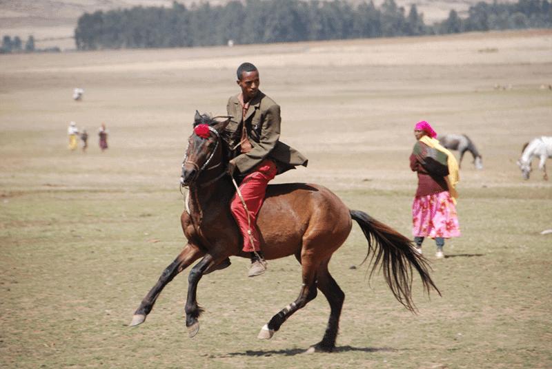 An Oromo horseman gallops along the plains in Bale