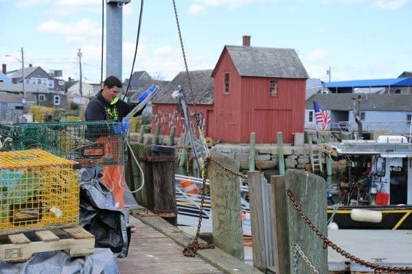 A fisherman fixes his gear on the wharf in Rockport Massachusetts. Motif #1 stands in the background.