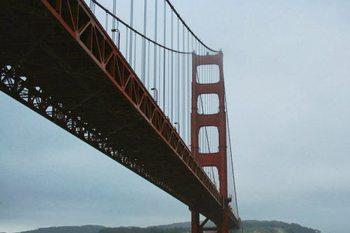 San Francisco's Hippest Happenings