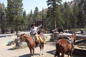 Horses and Hills At Mammoth Lake in the Mountains