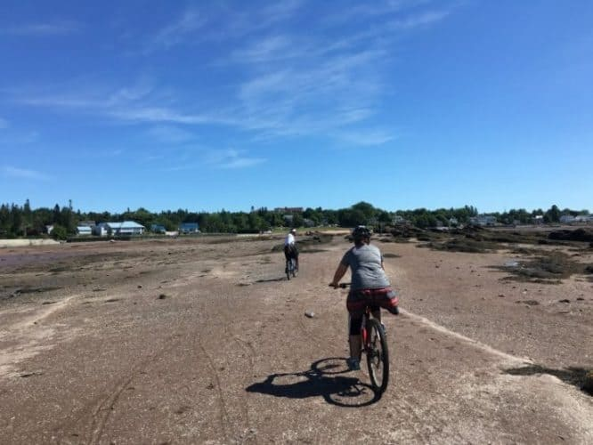Riding our bikes out into the harbor at low tide in St. Andrews.