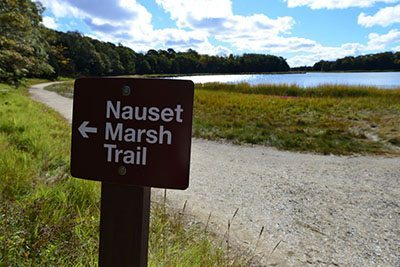 This trail is the gateway to the Cape Cod National Shoreline. It starts at the Salt Pond Visitor Center in Eastham and wanders through dense pines, past monuments and over bridges.