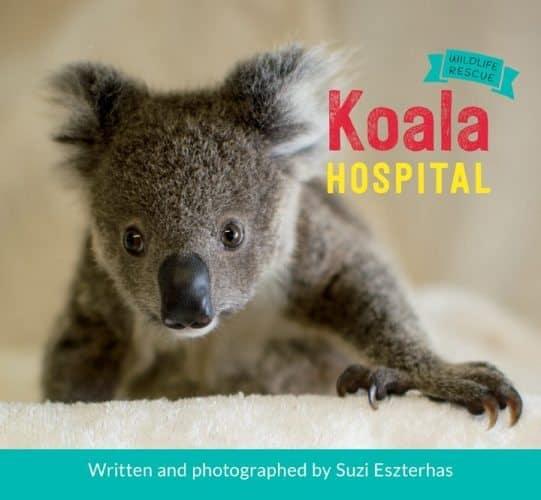 Wildlife Rescue Koala Hospital_cover_LoRes_screenRGB