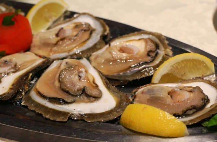 European flat oysters at Restaurant Fjord in Lim Bay, Istria. photos by Darrin DuFord.