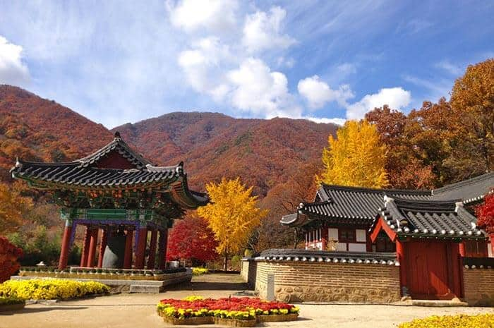 Just below Il Won's cabin, these temples are a hot attraction for tourists and locals in Jirisan National Park.
