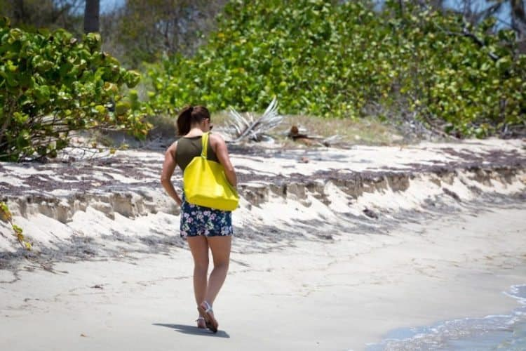 Walking Herbert's Beach., Nevis