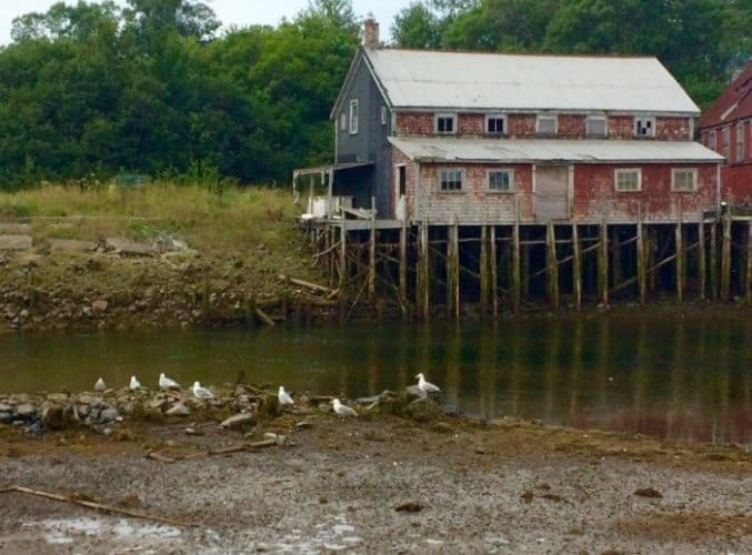 Seal Cove is unchanged from the 1860s, here it shows the dramatic Bay of Fundy at low tide.