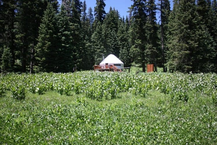 Taos yurt, a vacation rental for Freehouse