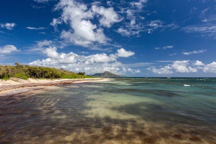 nevis, island, beach, caribbean