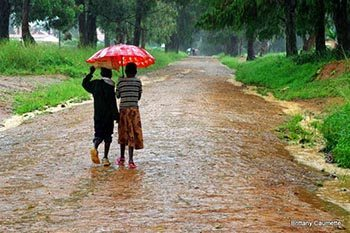 The Gift of Late Rains in Northern Malawi