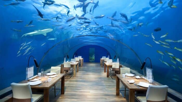 Dining in an underwater restaurant...a new trend in travel or just a fad?