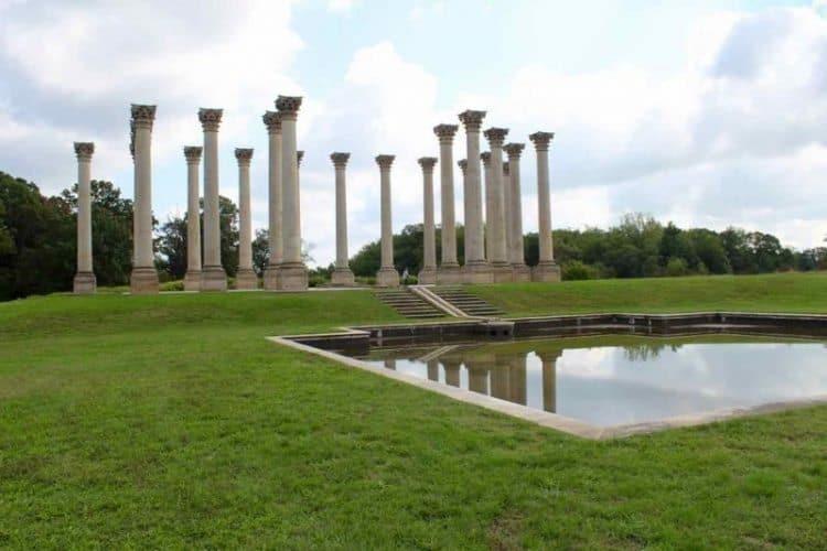 The National Arboretum: Washington DC's Playground