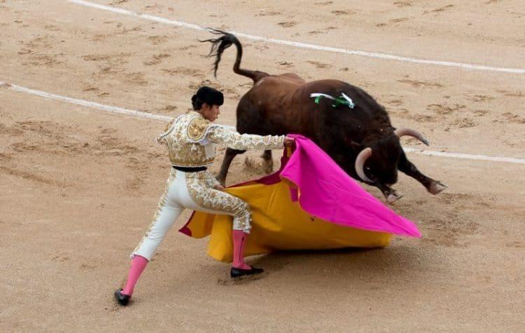 A bullfight in Madrid, Spain.
