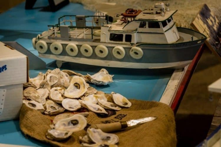 Oyster shell display in the Gulf of Mexico exhibit