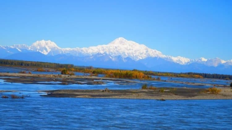 Mount Denali rising above the land (Photo by Shelley Seale)