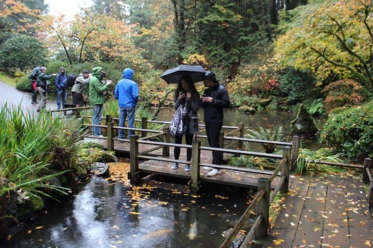Rainy day at Portland's Japanese Garden