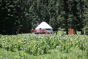 """FreeHouse: An """"Off The Grid"""" Experience - GoNOMAD Travel"""