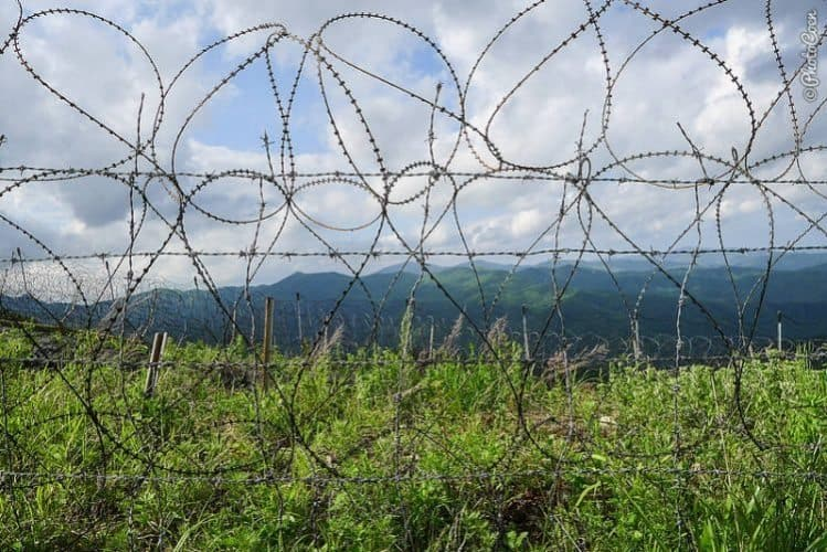 Barbed wire at the DMZ.