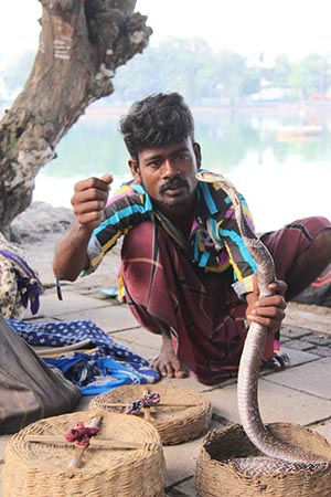 A snake charmer sits along the path around Beira Lake in Sri Lanka's capitol of Colombo.