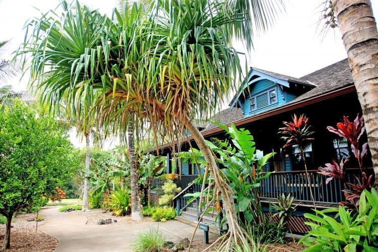 Lumeria Maui, a laid back resort where yoga and relaxation rule the day.