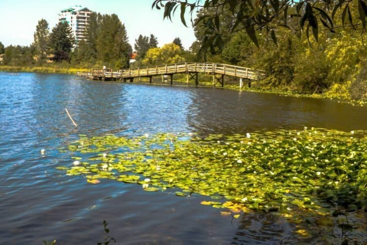 Mill Lake with a floating walkway in Abbotsford, BC.