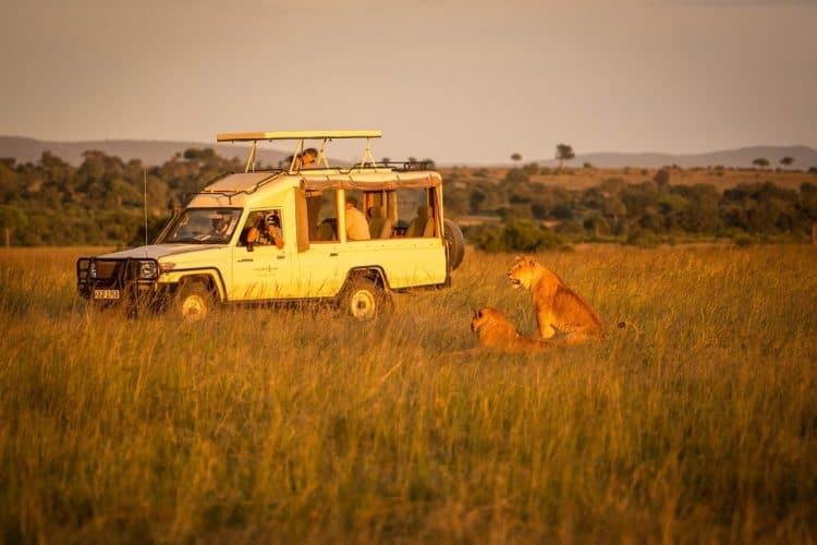 Safari action at the Masai Mara.